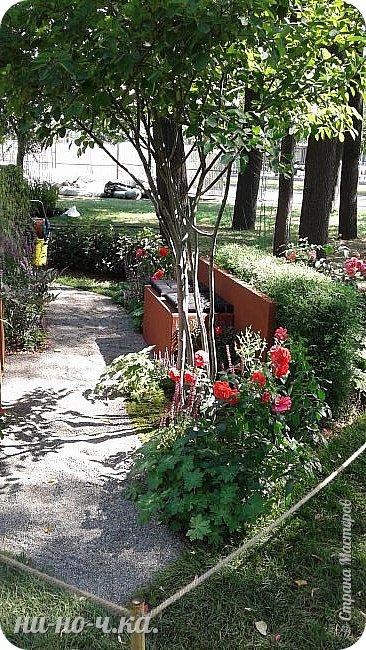 """Всем добрый день!!!  Сегодня я вам предлагаю прогуляться по ВВЦ. Я была на выставке """" Сады и люди"""". Он находится около павильона №75. Территория не очень большая, но очень много красиво созданных уголков... В корзине маленькие поросята, или кабанята))) фото 22"""