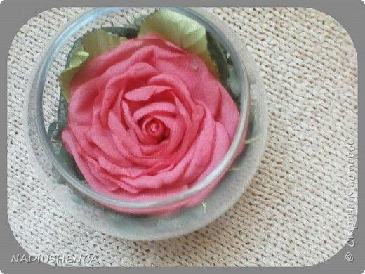Роза в стекле. фото 2
