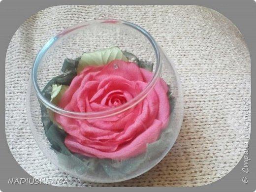 Роза в стекле. фото 5