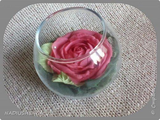 Роза в стекле. фото 4