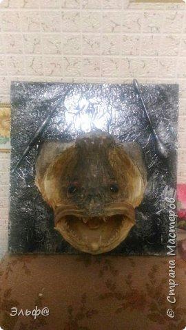 Вот такой вот трофей рыбака увековечили=)))) фото 3
