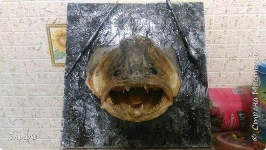 Вот такой вот трофей рыбака увековечили=)))) фото 1