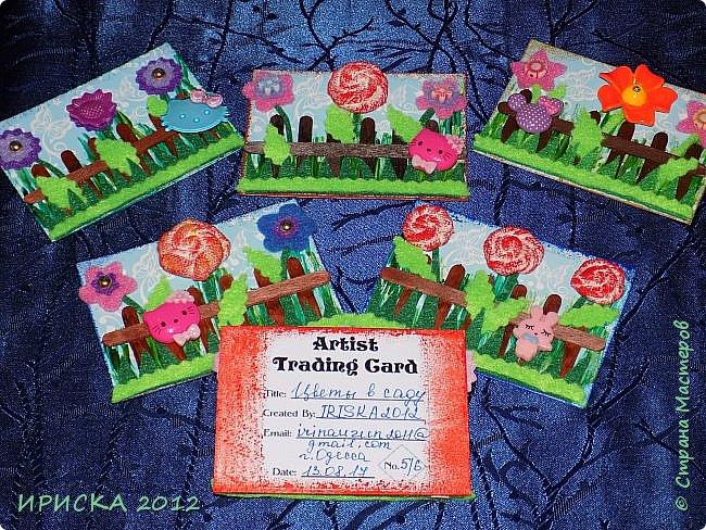 Привет всем гостям моей странички!!! Несколько серий АТС лежат и ждут вдохновения, а эта серия родилась спонтанно. Увидела в магазине открытку с заборчиком и цветами, конечно, там все было из бумаги, а мне захотелось сделать деревянный забор и ярких цветов. Первыми к выбору приглашаю Элайджу и Олечку -  p_olya71, надеюсь что-то понравится :))) фото 15