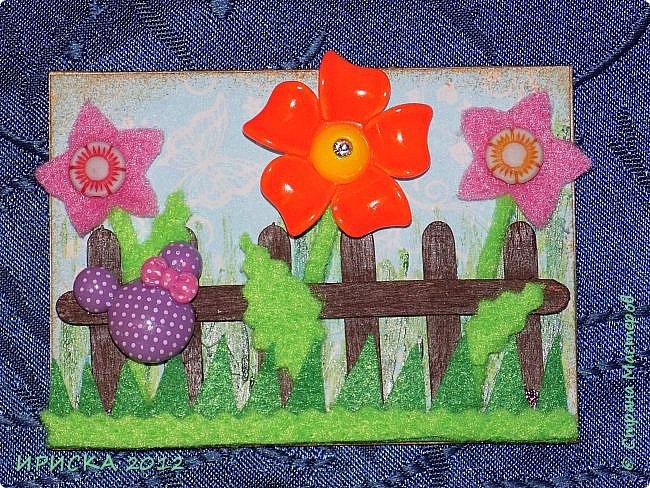 Привет всем гостям моей странички!!! Несколько серий АТС лежат и ждут вдохновения, а эта серия родилась спонтанно. Увидела в магазине открытку с заборчиком и цветами, конечно, там все было из бумаги, а мне захотелось сделать деревянный забор и ярких цветов. Первыми к выбору приглашаю Элайджу и Олечку -  p_olya71, надеюсь что-то понравится :))) фото 9