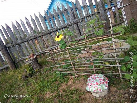 Всем здравствуйте!!! Давненько меня не было...Все лето мы жили на нашей любимой даче. Которую и хочу вам сейчас показать))) Что успели сделать, что еще может быть успеем сделать... Фотографии прошлогодней дачи у меня тут:  http://stranamasterov.ru/node/1050293 Кому интересно загляните))) Итак, это фото нашего палисадника и крылечка, и через который мы попадаем в дом, а потом и в сад... фото 28
