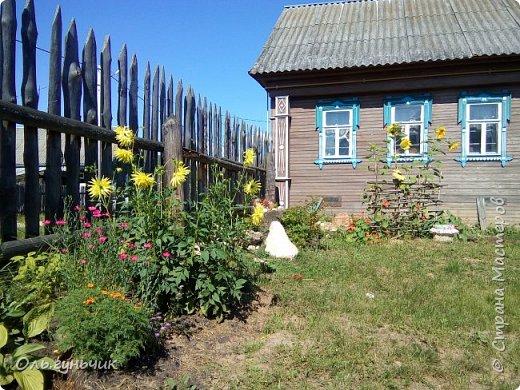 Всем здравствуйте!!! Давненько меня не было...Все лето мы жили на нашей любимой даче. Которую и хочу вам сейчас показать))) Что успели сделать, что еще может быть успеем сделать... Фотографии прошлогодней дачи у меня тут:  http://stranamasterov.ru/node/1050293 Кому интересно загляните))) Итак, это фото нашего палисадника и крылечка, и через который мы попадаем в дом, а потом и в сад... фото 71