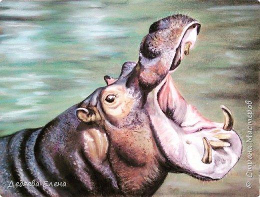 Продолжаю серию диких животных. Уж очень мне понравилось их рисовать сухой пастелью. фото 2
