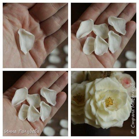 Привет всем жителям страны!!! Я сегодня к вам с плетистыми розами,которые всегда будут красивым дополнением в любом букете. И фото процесса прилагаю) фото 9