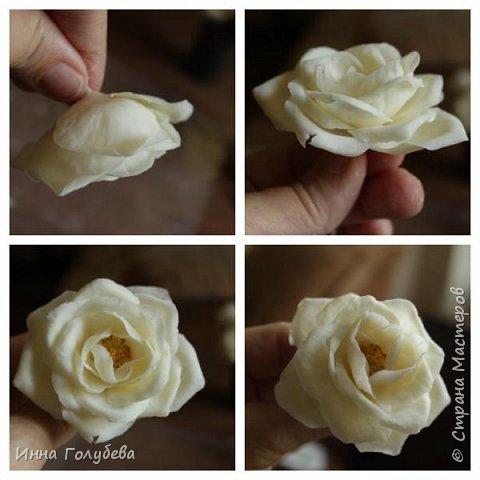 Привет всем жителям страны!!! Я сегодня к вам с плетистыми розами,которые всегда будут красивым дополнением в любом букете. И фото процесса прилагаю) фото 13