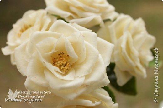 Привет всем жителям страны!!! Я сегодня к вам с плетистыми розами,которые всегда будут красивым дополнением в любом букете. И фото процесса прилагаю) фото 3