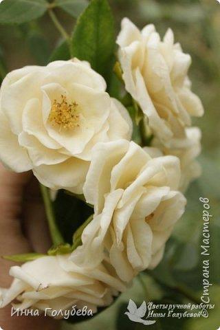 Привет всем жителям страны!!! Я сегодня к вам с плетистыми розами,которые всегда будут красивым дополнением в любом букете. И фото процесса прилагаю) фото 19