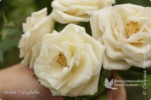 Привет всем жителям страны!!! Я сегодня к вам с плетистыми розами,которые всегда будут красивым дополнением в любом букете. И фото процесса прилагаю) фото 18
