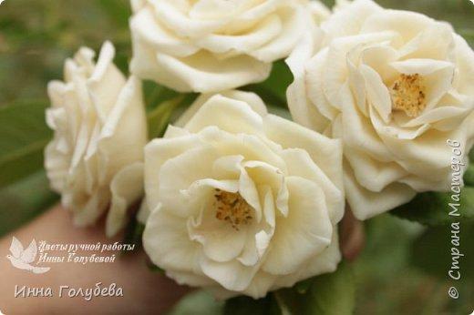 Привет всем жителям страны!!! Я сегодня к вам с плетистыми розами,которые всегда будут красивым дополнением в любом букете. И фото процесса прилагаю) фото 1