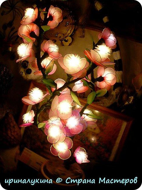 Вот такой светильник у меня получился из  электрической елочной гирлянды, капроновых колготок,проволоки, камешков и гипса. фото 9