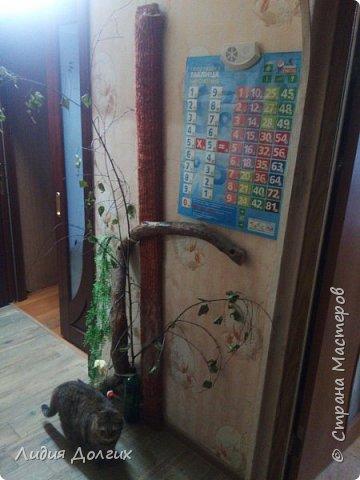 Когда-то привезли с дачи от друзей вот так изогнутый ствол старой яблони. Приделали его к стене в коридоре, думали сделать такое стилизованное дерево, но кошка решила, что это поставили ей тренажёр. Пришлось дополнить длинной доской, обтянутой материалом, оставшейся от старого дивана фото 1