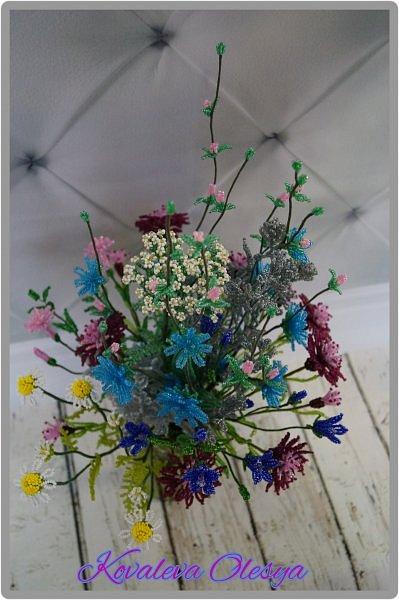 Приветствую всех заглянувших! Хочу вам похвастаться свеже сплетенным букетом полевых цветов. В нём: травяная гвоздика, незабудка, василёк, колокольчик, цикорий, тысячелистник, полынь. ВОТ!)) Трудилась 2 недели... фото 4