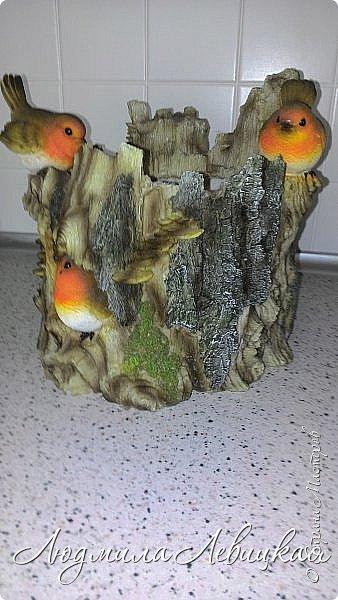 Всем привет! Вот такое кашпо я сделала  для лоджии. Пол-литровую банку оклеила сначала малярным скотчем, а потом на него наклеила при помощи горячего клея кусочки сосновой коры. После покрыла все бесцветным лаком. Получился пенёк. фото 7