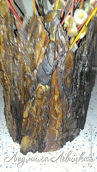 Всем привет! Вот такое кашпо я сделала  для лоджии. Пол-литровую банку оклеила сначала малярным скотчем, а потом на него наклеила при помощи горячего клея кусочки сосновой коры. После покрыла все бесцветным лаком. Получился пенёк. фото 3