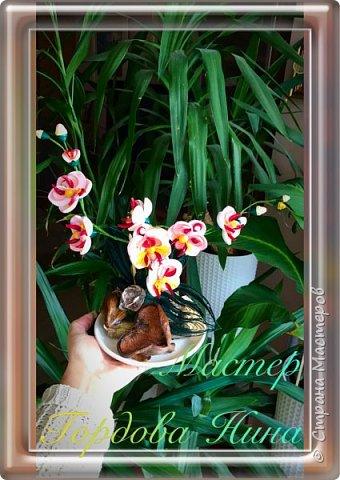Орхидея- загадочный цветок. Природа поделилась с нами таким разнообразием форм и красок, что я долго собиралась с мыслями, что же выбрать для своей работы. Начала пробовать, постепенно скручивая и примеряя. фото 2