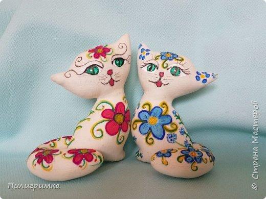 Цветные коты. фото 1