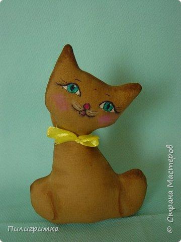 Цветные коты. фото 9