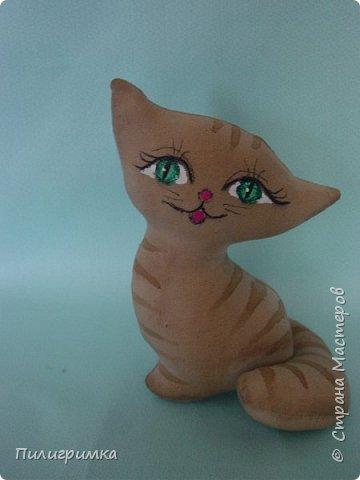 Цветные коты. фото 6