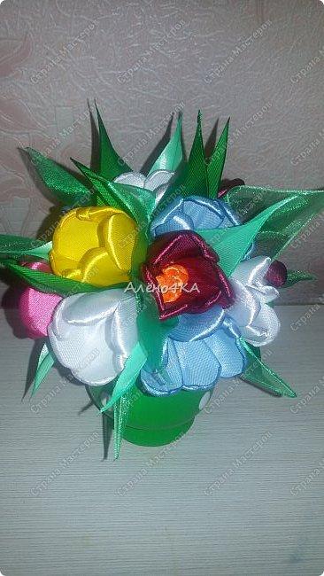 Такой горшочек с тюльпанами сделала в подарок фото 5