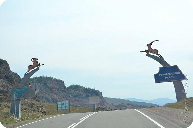 28го июля мы решили проехать до самой дальней точки нашего маршрута по Чуйскому тракту. Доехать планировалось до Кош-Агача. Это примерно 50 км не доезжая до границы с Монголией. Погода и природа радовали нас и восхищали. Предлагаю полюбоваться пейзажами фото 3
