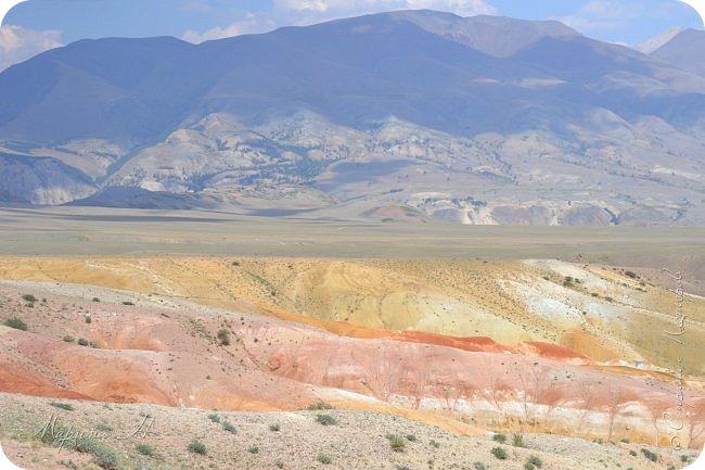28го июля мы решили проехать до самой дальней точки нашего маршрута по Чуйскому тракту. Доехать планировалось до Кош-Агача. Это примерно 50 км не доезжая до границы с Монголией. Погода и природа радовали нас и восхищали. Предлагаю полюбоваться пейзажами фото 24