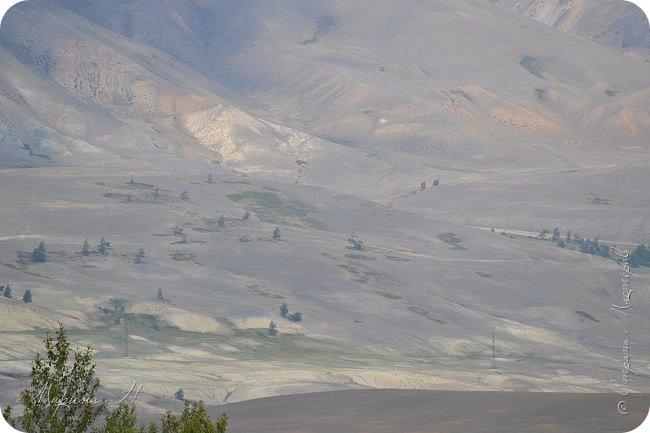 28го июля мы решили проехать до самой дальней точки нашего маршрута по Чуйскому тракту. Доехать планировалось до Кош-Агача. Это примерно 50 км не доезжая до границы с Монголией. Погода и природа радовали нас и восхищали. Предлагаю полюбоваться пейзажами фото 26