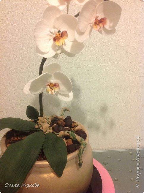 """Всем доброго времени суток! Моя работа- торт """" Орхидея в горшке"""". Тут все съедобное, кроме стебля орхидеи (она из проволоки, обмотанной тейп-лентой))) фото 3"""