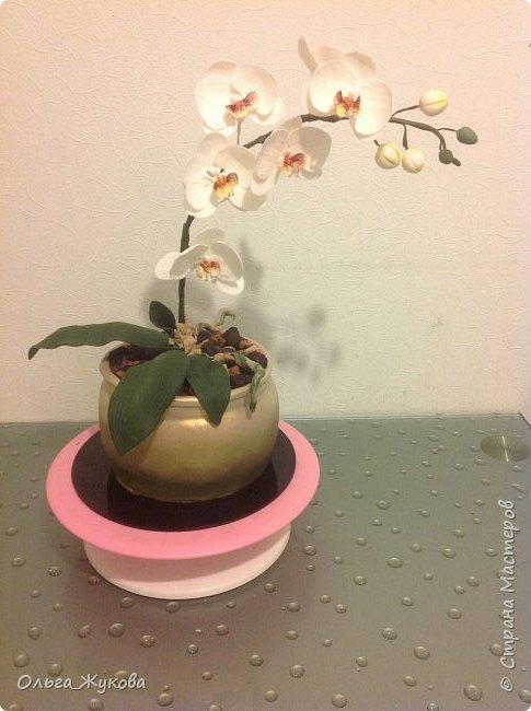 """Всем доброго времени суток! Моя работа- торт """" Орхидея в горшке"""". Тут все съедобное, кроме стебля орхидеи (она из проволоки, обмотанной тейп-лентой))) фото 4"""