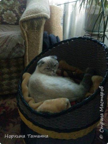Давно хотела сплести кошки домик, на просторах интернета, очень много вариантов, а я придумала свой. Домик 2 в 1. Очень удобный для кошечек с котятами и не только.  фото 7