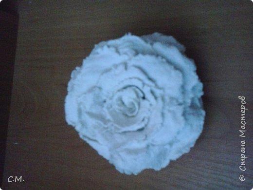 Здравствуйте.Вот и еще одна из моих работ в технике папье-маше (бумажная лепка).Хотелось сделать что-то необычное.И родилась вот такая идея-классика с особым смыслом.Этот образ олицетворяет  легкость, пробуждение,возродение, расцвет и свежесть. фото 20