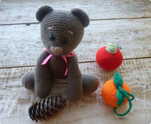 Медведей много не бывает) фото 3