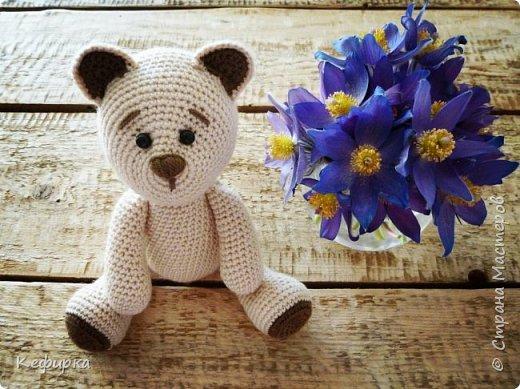 Медведей много не бывает) фото 1
