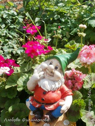 Как не печально, но до конца лета осталось чуть меньше двух недель. Уже второй год оно не радует наш край теплом, часто шли дожди. Но все равно так жаль с ним расставаться. Я хочу пригласить вас в гости, прогуляться по моему саду, полюбоваться цветами. Королева сада - роза, самый узнаваемый и любимый цветок. фото 15