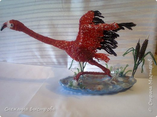 взлетающий красный фламинго фото 1