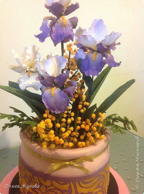 """Всем доброго времени суток) мой торт """"Ирисы в горшке"""") Что можно сказать... Я влюбилась в сахарные ирисы)) Делать их было захватывающе! Самое удивительное в сахарных цветах то, что глядя на кусочек мастики и на готовый цветок, сама не веришь, что это возможно! Как оказалось- возможно))) фото 2"""