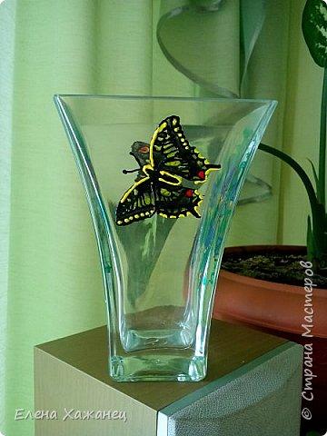 Бабочки и колокольчики фото 3