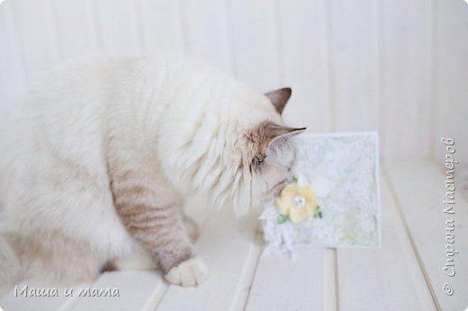 И снова здравствуйте!!!!  Еще одна открыточка. Вдохновлялась у Lady E  http://scrapartbyladye.blogspot.ru/  У меня получилось как-то так фото 6