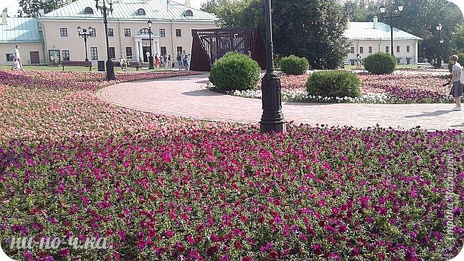 В Царицыно я начала свою экскурсию с оранжерей, их 3 корпуса... Это вид около первого корпуса на улице... фото 58