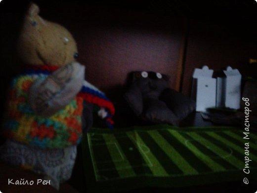 Здравствуй СМ! Сегодня у вас гость! Его зовут Джус, или Джусик. У него есть и другое имя: Том. Дж: Ох, хватит! Я вчера засну... И заснул. Я: Ну, давай, вставай соня! Спит. Я: Ну же, вставай! А то проспишь завтрак. Дж: Ладно, ладно, только быстро! фото 4