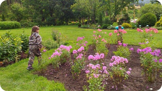 Сегодня приглашаю прогуляться по ботаническому саду, который находится близ села Камлак. В названиях цветов я совсем не сильна, поэтому предлагаю просто полюбоваться фото 9