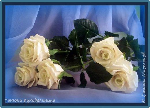 Здравствуй Страна! У меня снова розы из фарфора. фото 1
