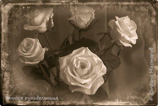 Здравствуй Страна! У меня снова розы из фарфора. фото 5
