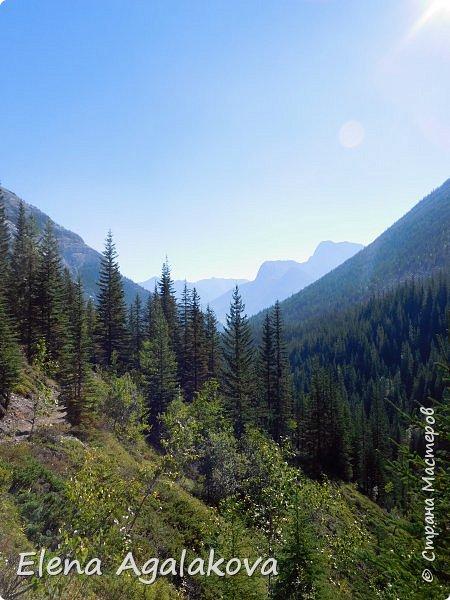 Добрый летний денек всем заглянувшим в гости! Ловим последние летние солнечные и жаркие деньки! Опять наша семья провела день в горах и хочется поделится той красотой которую увидели! Ходили к озеру Галатея, полтора часа езды от Калгари. Весь путь 16км, набор высоты 700 м.  фото 8