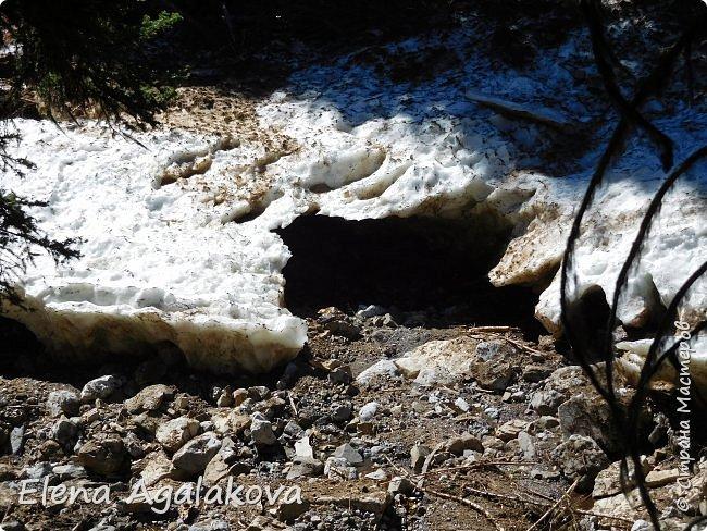 Добрый летний денек всем заглянувшим в гости! Ловим последние летние солнечные и жаркие деньки! Опять наша семья провела день в горах и хочется поделится той красотой которую увидели! Ходили к озеру Галатея, полтора часа езды от Калгари. Весь путь 16км, набор высоты 700 м.  фото 24