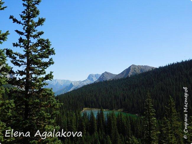 Добрый летний денек всем заглянувшим в гости! Ловим последние летние солнечные и жаркие деньки! Опять наша семья провела день в горах и хочется поделится той красотой которую увидели! Ходили к озеру Галатея, полтора часа езды от Калгари. Весь путь 16км, набор высоты 700 м.  фото 14