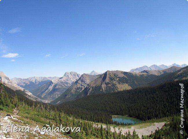 Добрый летний денек всем заглянувшим в гости! Ловим последние летние солнечные и жаркие деньки! Опять наша семья провела день в горах и хочется поделится той красотой которую увидели! Ходили к озеру Галатея, полтора часа езды от Калгари. Весь путь 16км, набор высоты 700 м.  фото 15